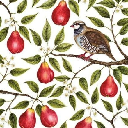 Pack of 5 Fine Art  Xmas / Christmas Cards - Partridge  in a Pear Tree